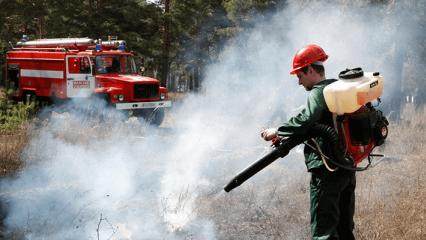 Нормы обеспечения противопожарным оборудованием и средствами тушения лесных пожаров